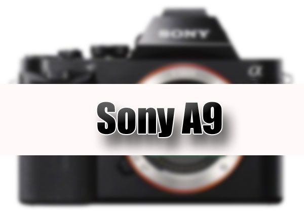Sony-A9-Mirrorless