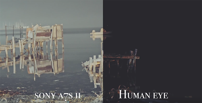 sony a7s II vs human eye