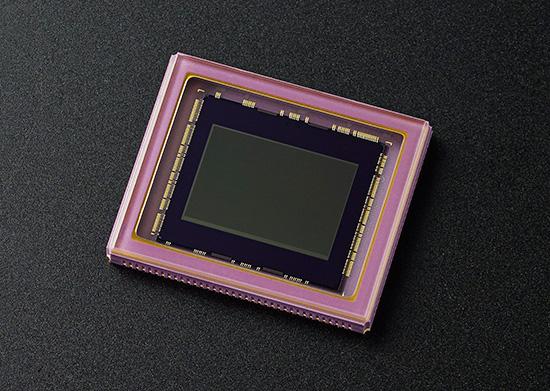Nikon-1 -inch-sensor