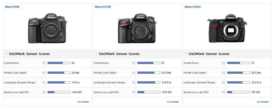 Nikon D500 sensor review3