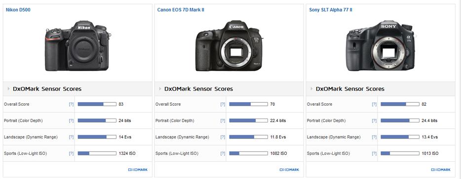 Nikon D500 sensor review4