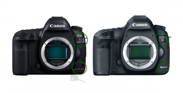 5d-mark-iv-vs-iii