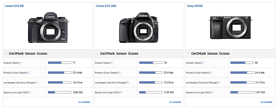 Canon EOS M5 review2 Dxomark