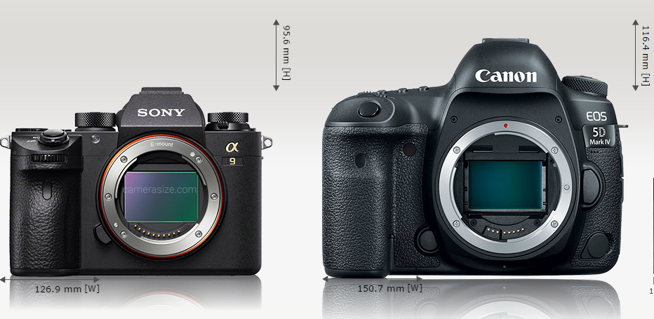 Sony A9 size comparison2