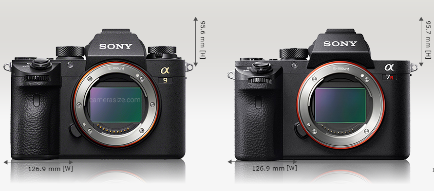 Sony A9 size comparison3